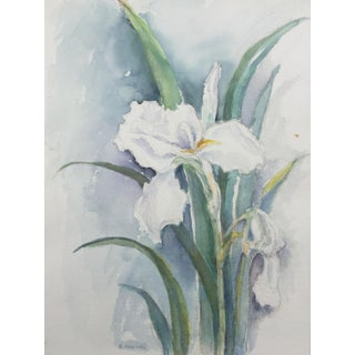Iris Flowers Watercolor Painting by R. Hoevel