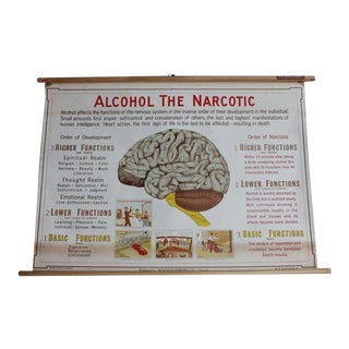 "Antique ""Alcohol The Narcotic"" Poster"