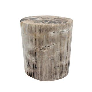 Solid Petrified Wood Side Table