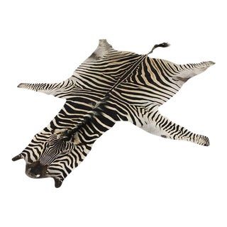 Natural Zebra Hide Rug - 8'3 x 6'9