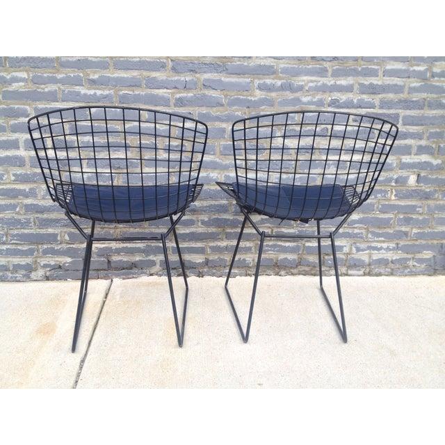 Image of Harry Bertoia Black Side Chairs - Pair