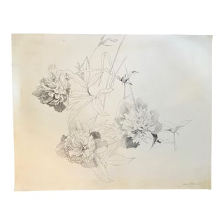 Mid-Century Pencil Drawing of Flowers