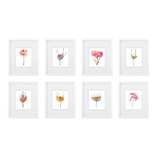 Steve Klinkel Botanical Giclee Prints- Set of 8