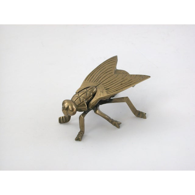 Image of Brass Fly Box