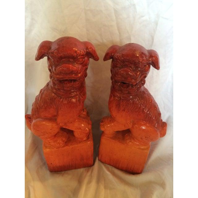Image of Orange/Red Foo Terra-Cotta Dogs