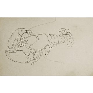 Lobster Pencil Study by George Baer