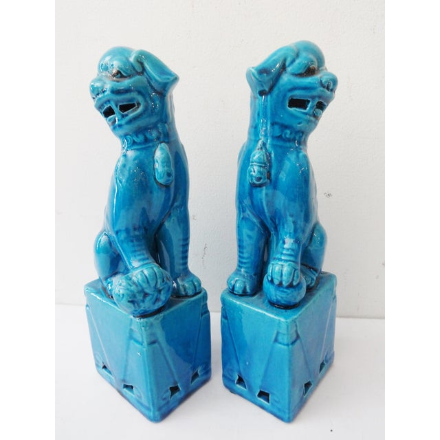 Image of Turquoise Porcelain Foo Dogs - A Pair