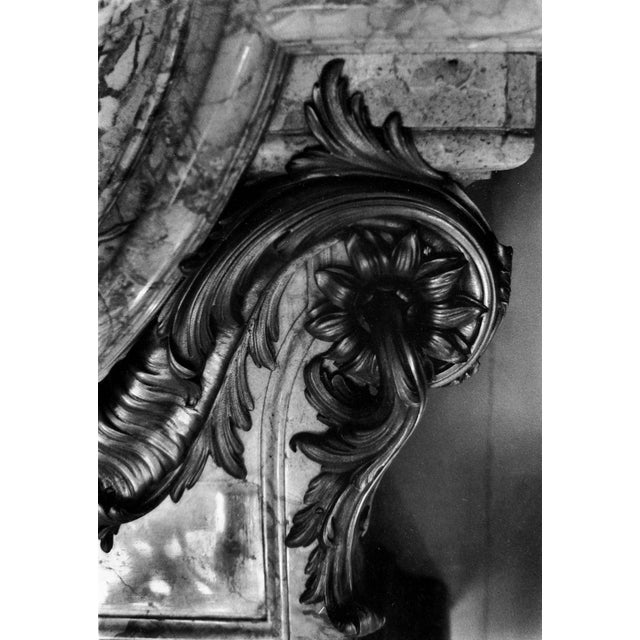 Image of Architectural Ornament Detail Photograph