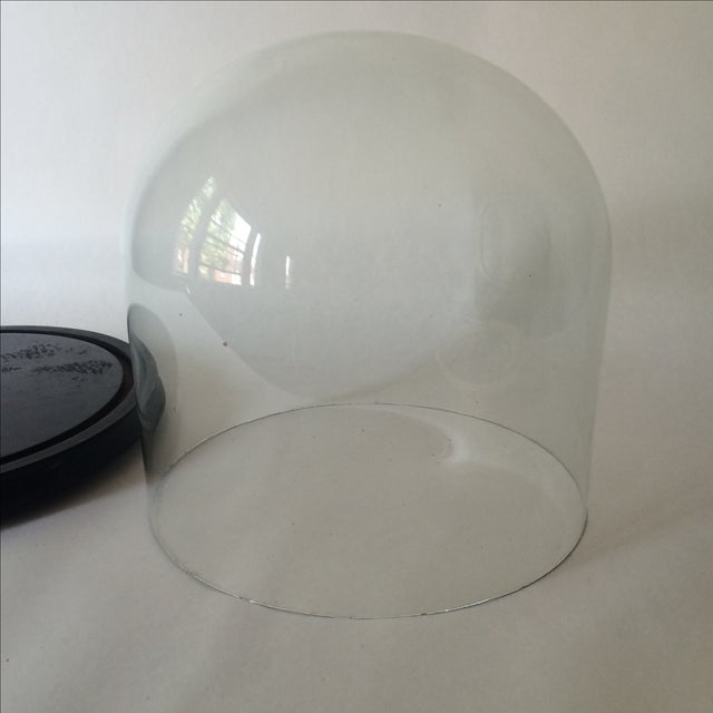 Victorian Cloche Dome with Stand - Image 6 of 8