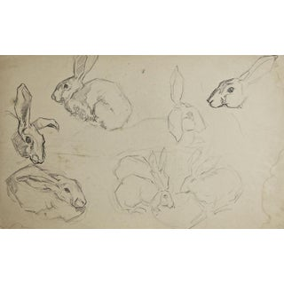Rabbit Pencil Study by George Baer