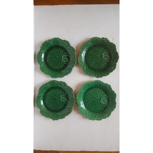 Image of Wedgwood Cabbage Plates - Set of 4