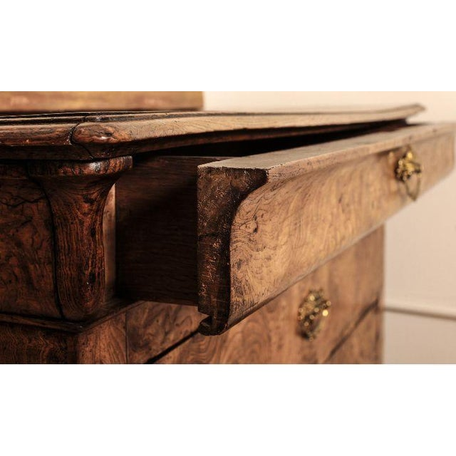 French Louis Philippe Burl Wood Chest - Image 7 of 7