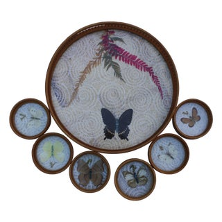 Mid-Century Butterfly Tray With Coasters - S/7