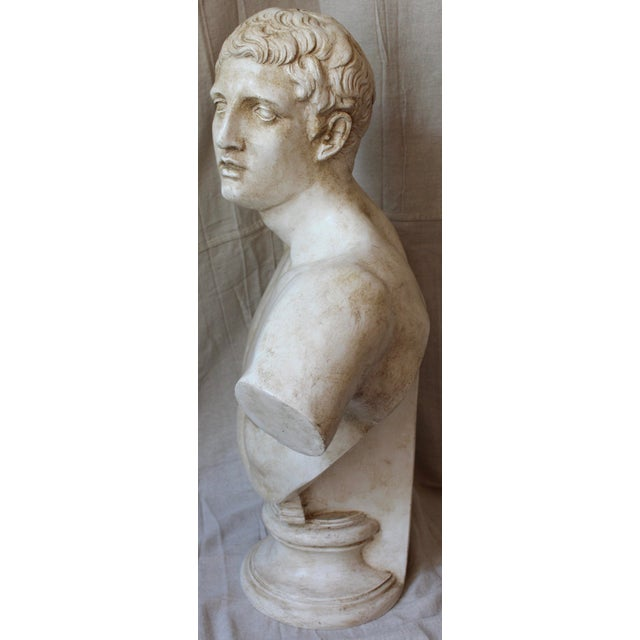 Vintage Bust of a Roman Athlete - Image 6 of 8