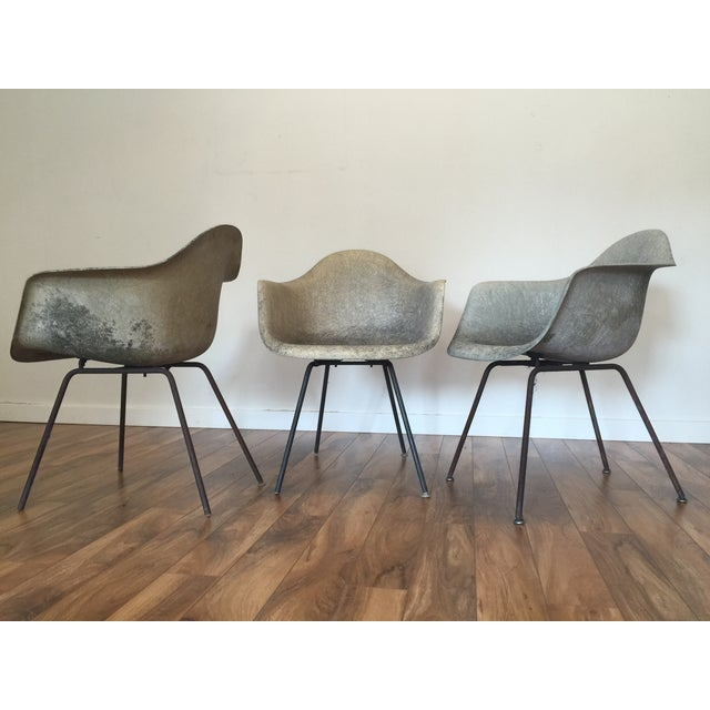 Eames Shell Arm Chairs - Set of 3 - Image 4 of 10