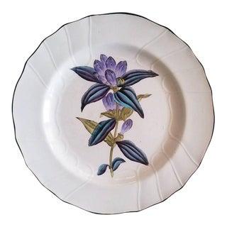 Set of Six English Pottery Botanical Plates