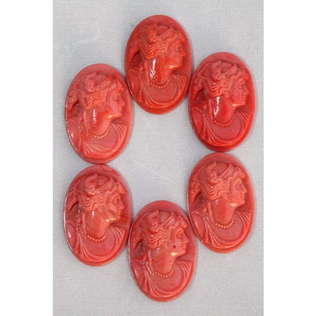Image of European Coral Glass Cameos - Set of Six