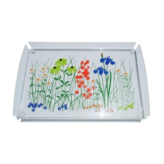 Lucite Hand-Painted Tray