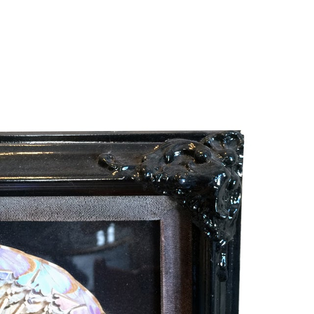 Victorian Butterfly Framed Under Glass - Image 3 of 3