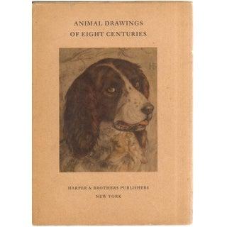 Eight Centuries Animal Drawings