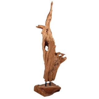 Asian Wild Teak Tree Root Sculpture
