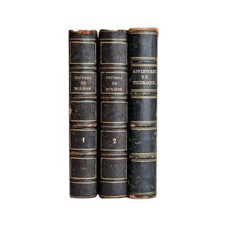 19th C. Leather Bound French Books - Set of 3