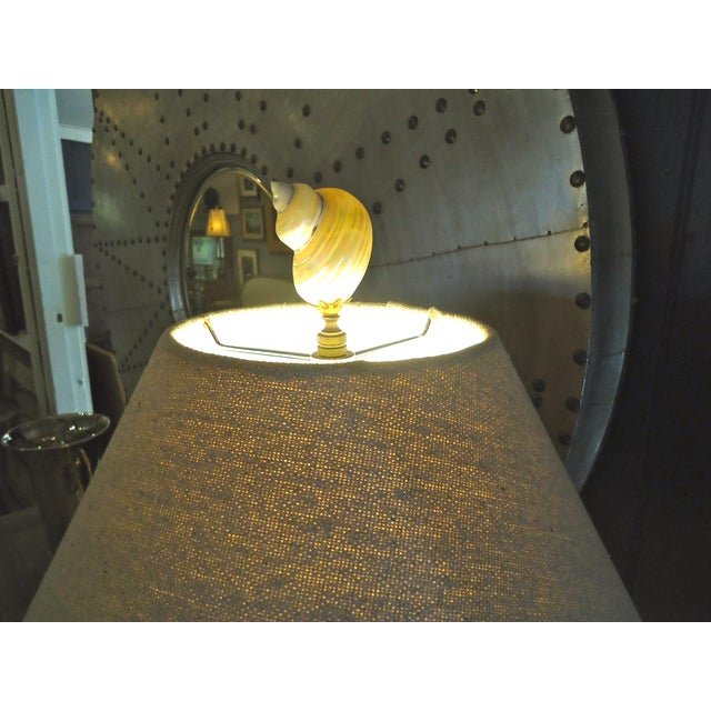 Image of Gorgeous Authentic Coral Table Lamp