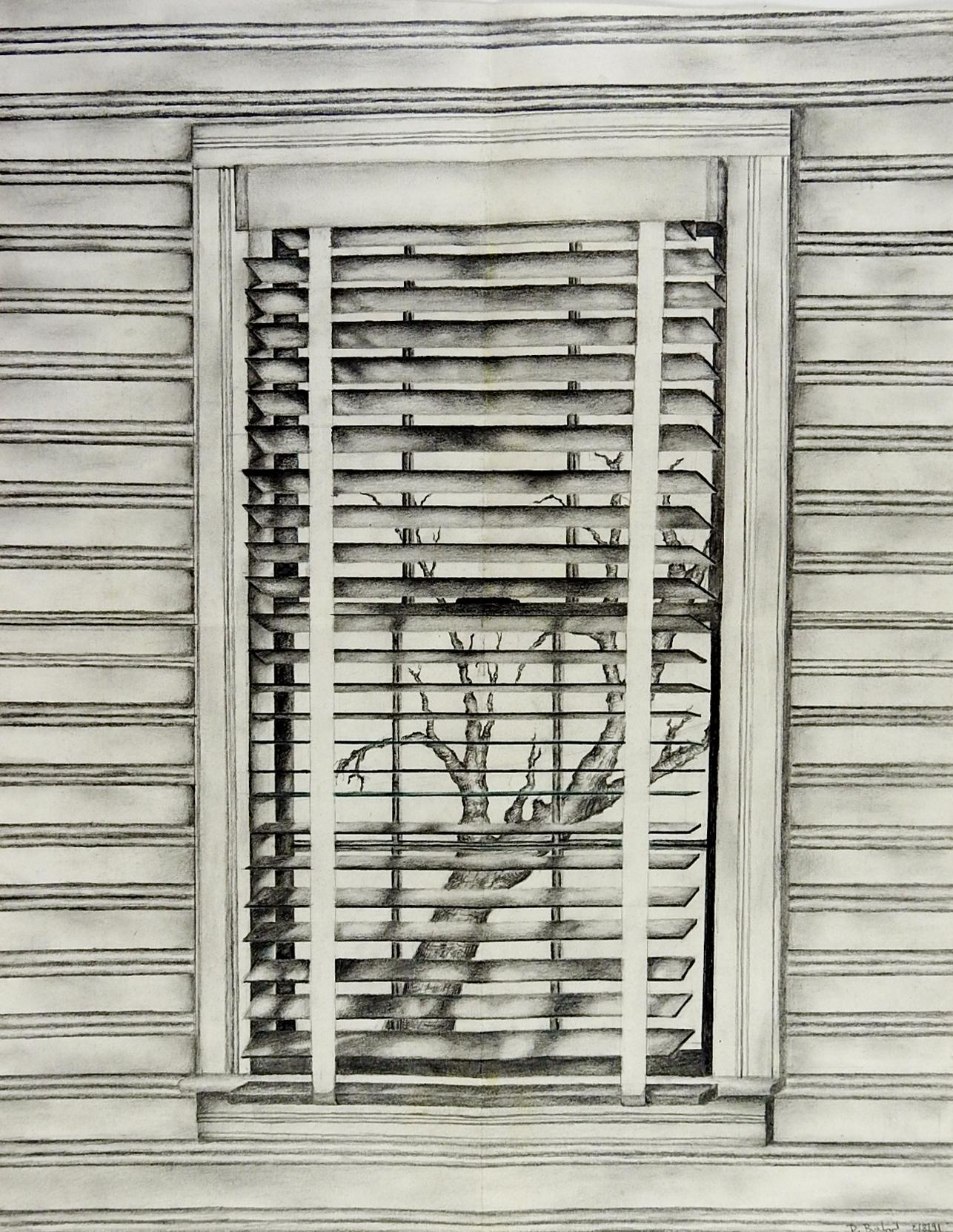 window pencil drawing. 1991 preot buxton \ window pencil drawing h