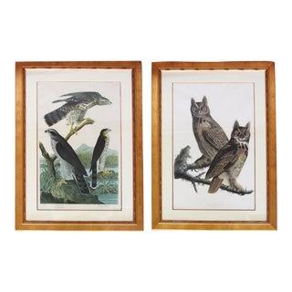 Audubon Bird Engravings - Pair