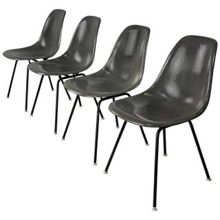 Four Elephant Gray Fiberglass Shell Chairs by Charles and Ray Eames, 1960s