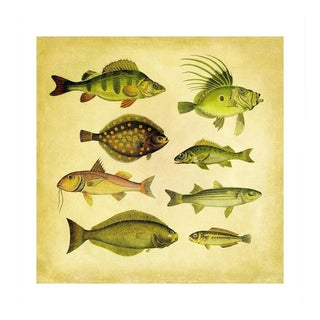 Vintage '8 Green Fish' Archival Print