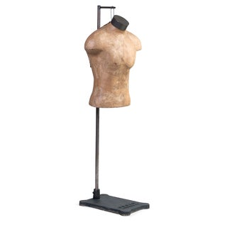 Male Mannequin Torso with Adjustable Stand