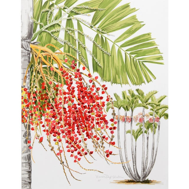 Image of Marion Sheehan McArthur Palm Lithograph