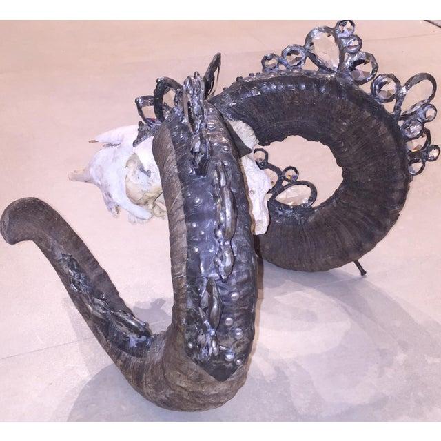 Image of Rams Skull Adorned With Swarovski Crystals