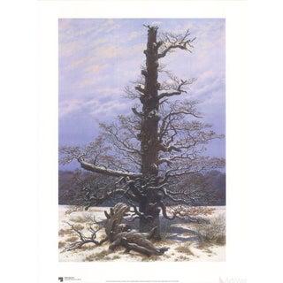 Caspar David Friedrich Oak Tree in the Snow Poster