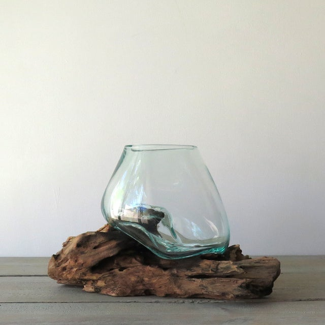 Glass on Teak Driftwood Terrarium - Image 3 of 7