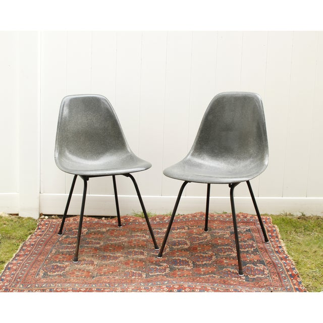 Image of Gray Eames Fiberglass Shell Chairs - A Pair