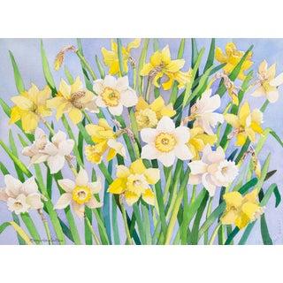 Still Life of Daffodils by Mary Lou De Mar