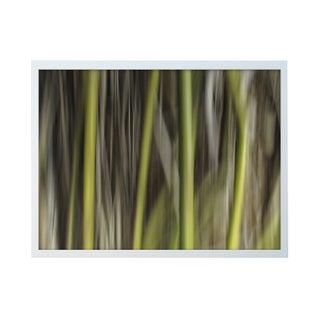 "Ofer Mizrachi ""34"" Framed Photo Print"