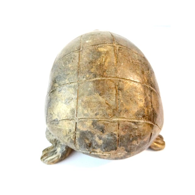 Bronze Akan Cote d'Ivoire Turtle - Image 6 of 7