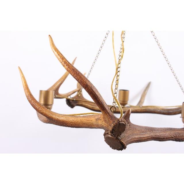 Swedish Deer Antler Chandelier - Image 3 of 5