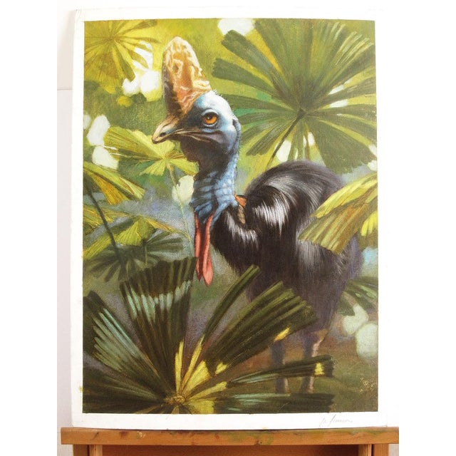 "Ute Simon ""Cassowary"" Jungle Bird Painting - Image 2 of 6"