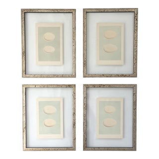 Framed Antique Morris Egg Prints - Set of 4