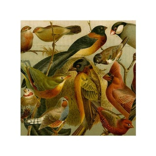 Antique 'Red Birds' Archival Print