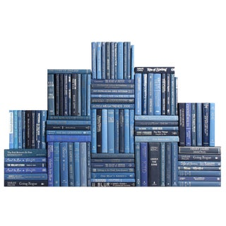 Modern Blue & Silver Book Wall, S/100