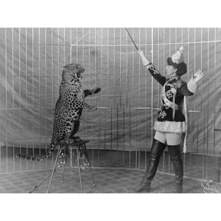 Late 19th-C. Cat Tamer Circus Photography