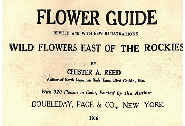 Flower Guide Book Wildflowers East Of The Rockies Chairish