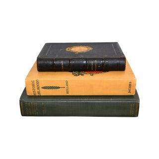 Antique Decorative Books - Set of Three