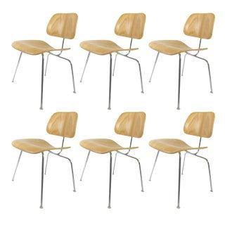Herman Miller White Ash Dining Chairs - Set of 6