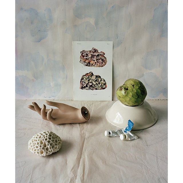 Image of Still Life Photograph With Hand